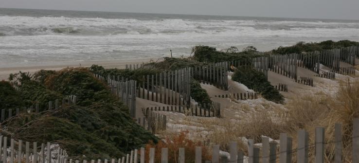 Beach Christmas 020118