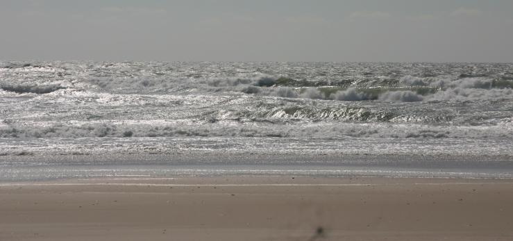 March 13 beach