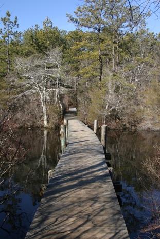QWR bridge 21318