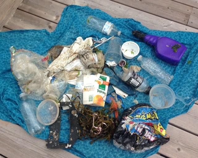 Beach Trash Betsy Rowe