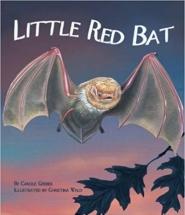 QWR Little Red Bat