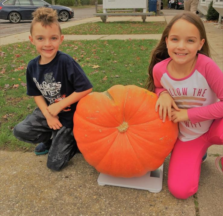 Winner pumpkin
