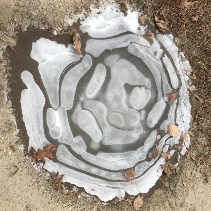 puddle ice lem