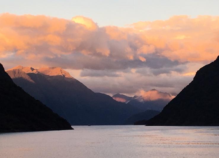NZ autumn Caroll Highet