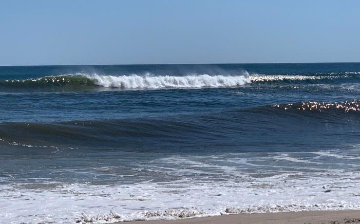 829 surf GJudge