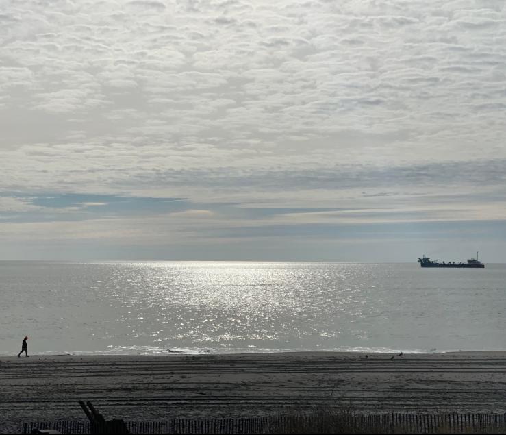 beach walk Margot Carr