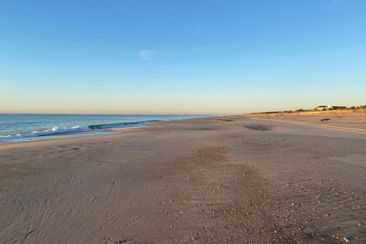 low tide lg