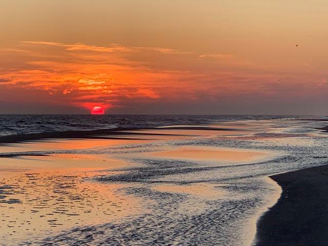 sunset paula p
