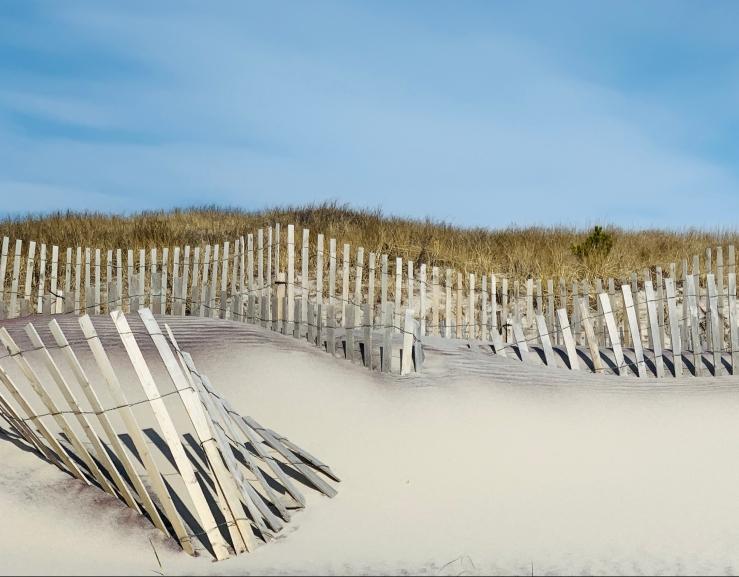 beach 1 MC