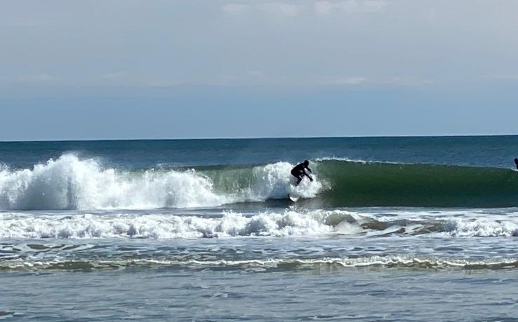 Surfer 0321 LEM