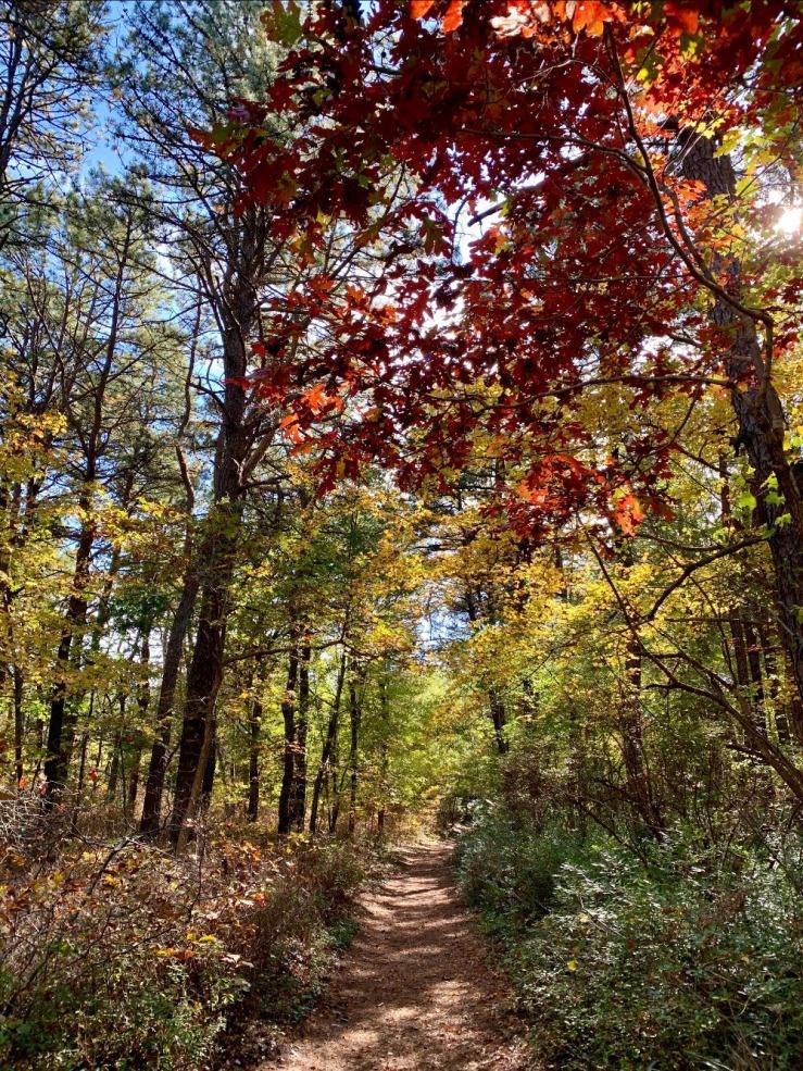 QWR Trail