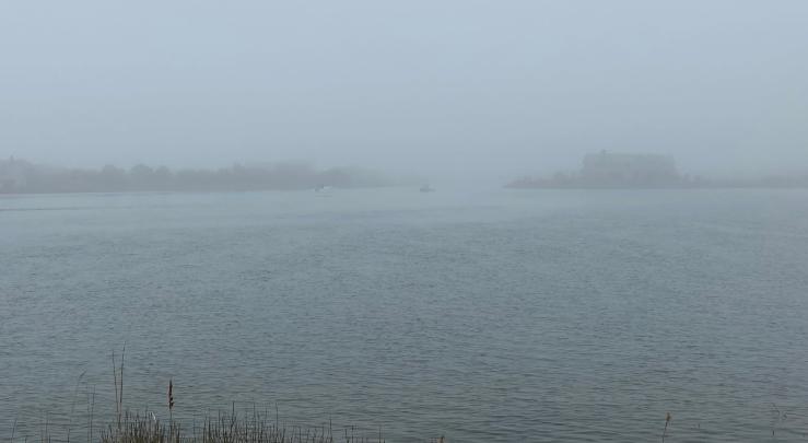 fish fog AB