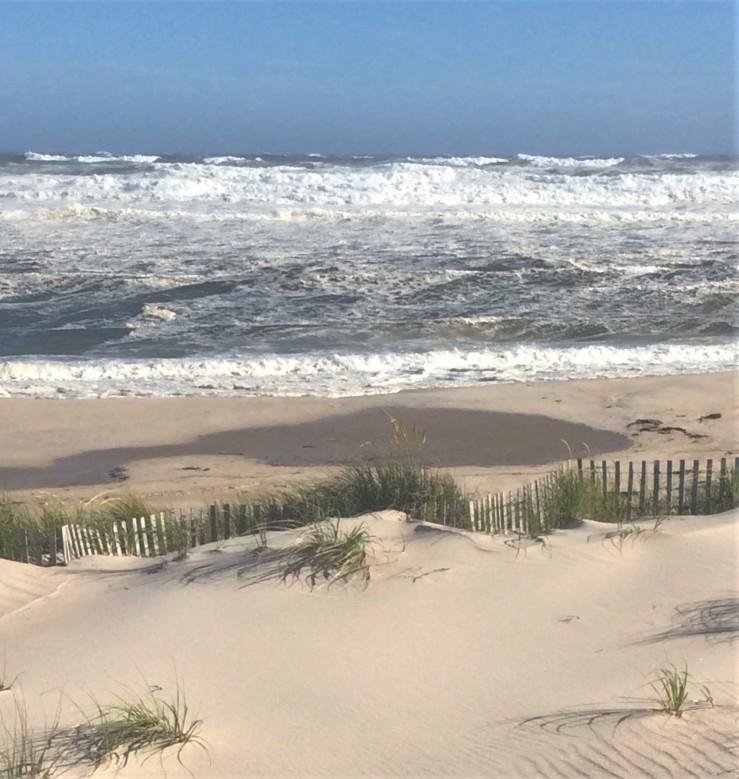 beachfront Lynn Joyce (2)