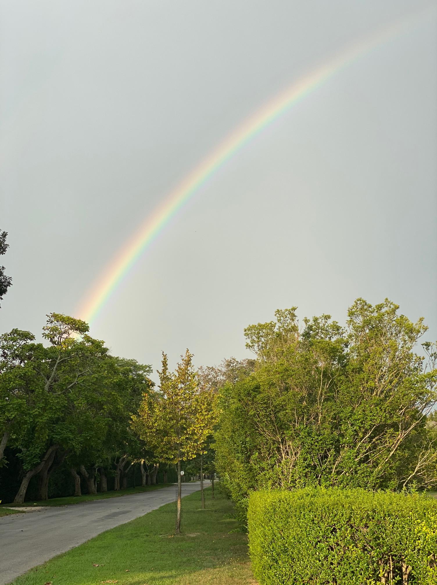 Qua Rainbow LM