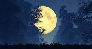 QWR full moon